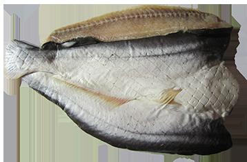 Cá dứa 1 nắng, khô cá dứa