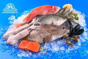 Bảo quản hải sản