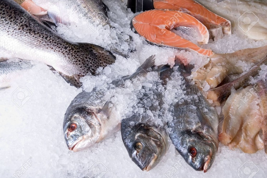 5878507-The-Dorado-fish-at-fish-sets-on-a-ice-background-Stock-Photo-frozen-food-fish