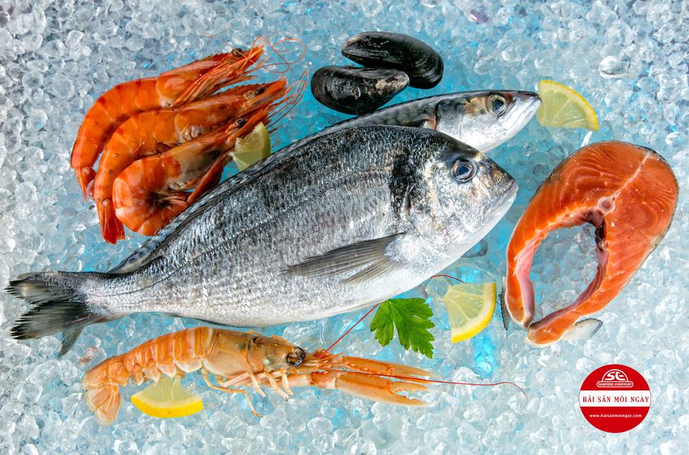 chọn hải sản tươi