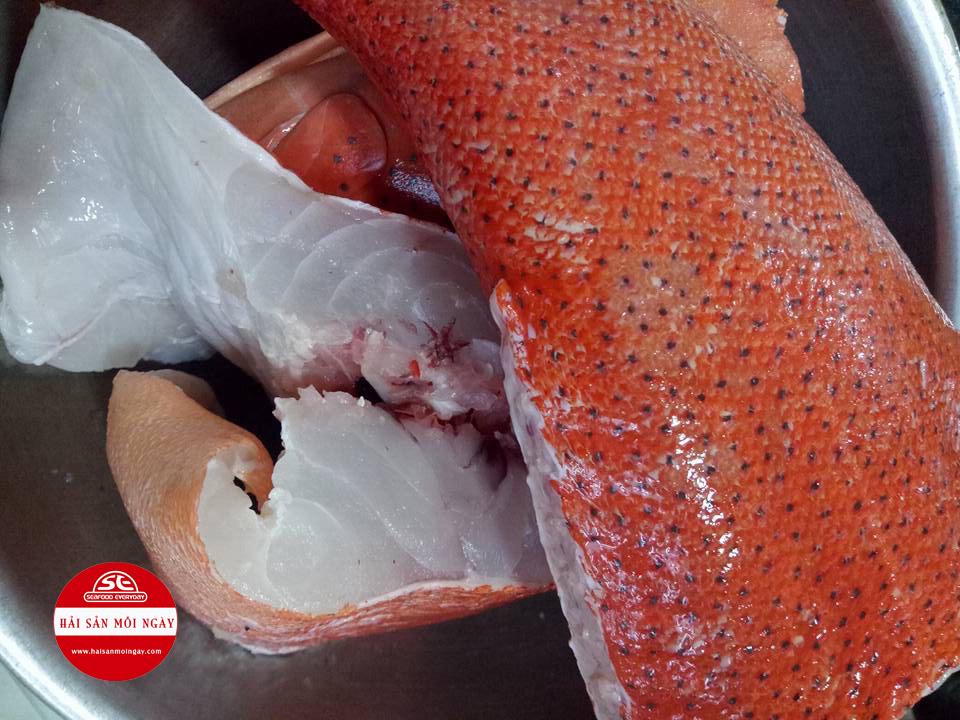 cá mú đỏ hấp Hong Kong