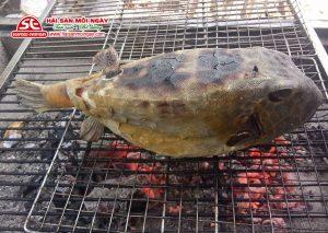 Cá bò hòm nướng