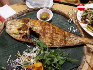 cá bò da