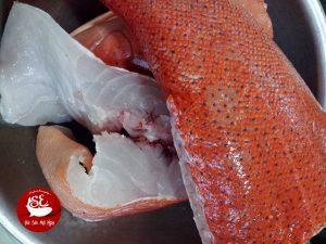 thịt cá mú đỏ