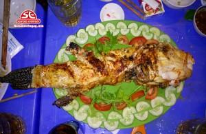 Cá mỹ nhân ngư nướng