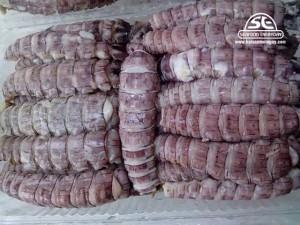 Thịt tôm tít