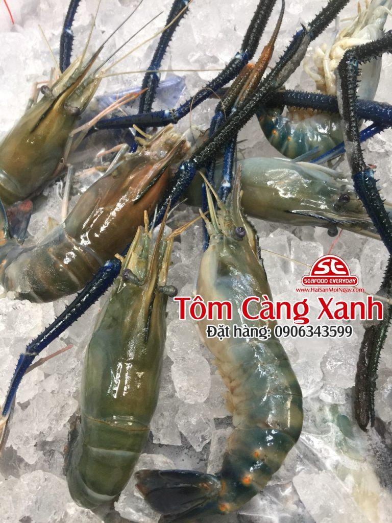 Tôm Càng Xanh